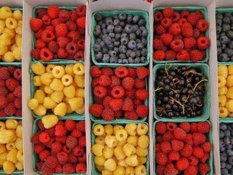 Santa Monica Certified Farmers' Markets