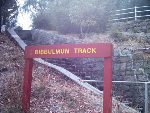 The Bibbulmum Track