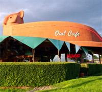 Owl Cafe - Albuquerque, NM