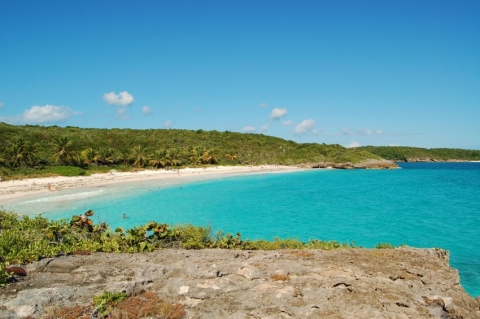 Vieques' Beaches