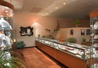 Rainbow Jewelers Inc - Tucson, AZ