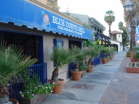 The Blue Coyote Grill
