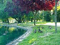 McKinley Park - Sacramento, CA