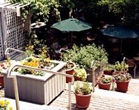 Scoozzi Trattoria & Wine Bar - New Haven, CT