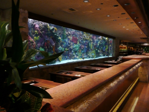 Aquarium @ The Mirage