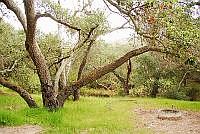 O'Neill Regional Park - Trabuco Canyon, CA