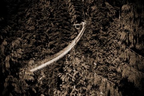 Vancouver & Capilano Suspension Bridge