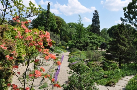 Jardins des Plantes' Tropical Greenhouses