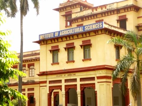Institute of Agricultural Sciences