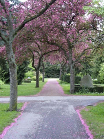 Assistens Cemetery (Assistens Kirkegård)