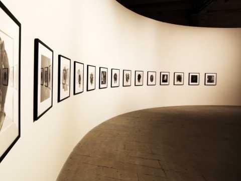 Gallery Louiza
