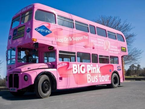 Big Pink Bus
