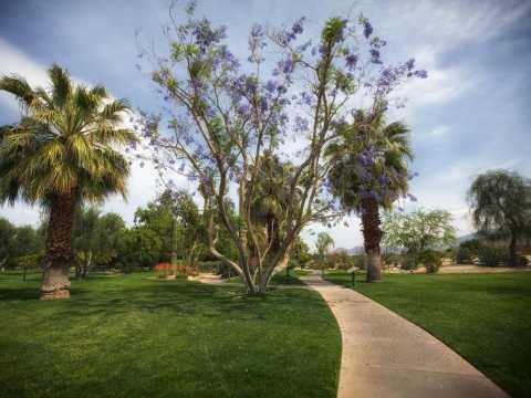 Palm Springs Walking Tours